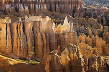 Bryce Canyon Sunrise Pinnacles