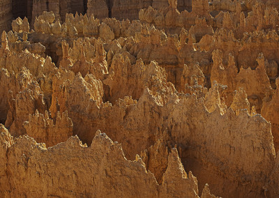 Bryce Canyon Detail